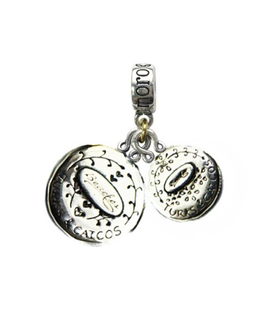 Beaches Turks and Caicos Iguana & Turks and Caicos Dolphin Sterling Silver Bead Charms